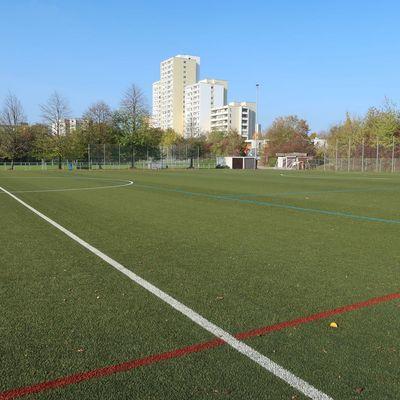 Sportplatz TSV Steinhaldenfeld (Untere Spechtshalde)